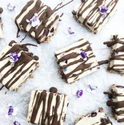 Raw Blueberry Cheesecake Squares
