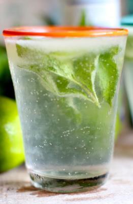 Coconut-Lime Mint Mixer