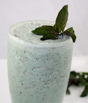 Mint Chocolate Chip Shake by Diana Stobo