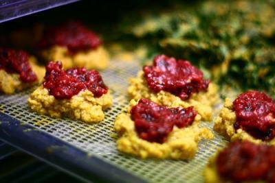 Cranberry Butternut Squash Cakes