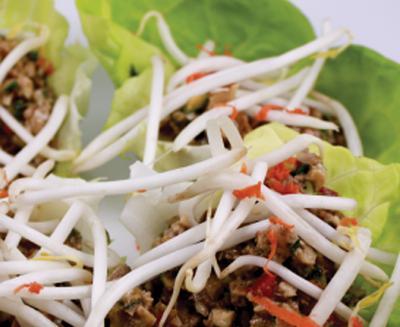 Thai Lettuce Wraps by Diana Stobo